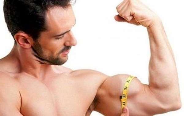 Basics Regarding Physique Muscle mass Immediate
