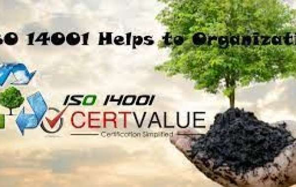 How to ensure your ISO 14001 implementation is profitable