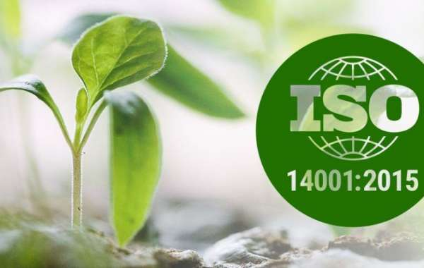 How could ISO 14001 assistance improve an organization's absolute quality administration